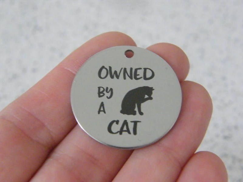 1 Owned by a cat stainless steel pendant JS3-42