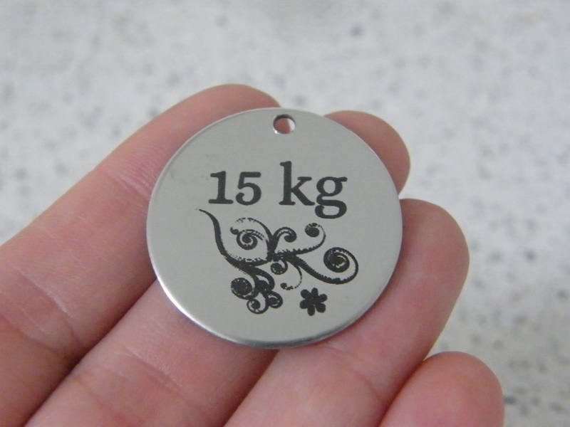 1 15KG stainless steel pendant JS6-5