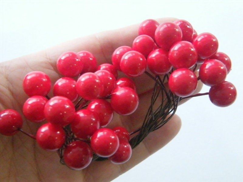 50 Red berry flower thingamajic Christmas vibe