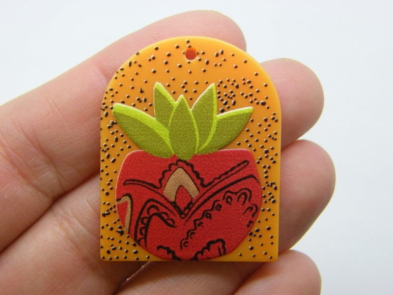 2 Cactus pendants plant pot resin L87