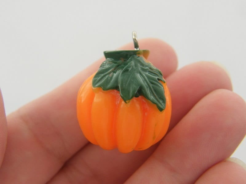 2 Pumpkin charms resin FD93