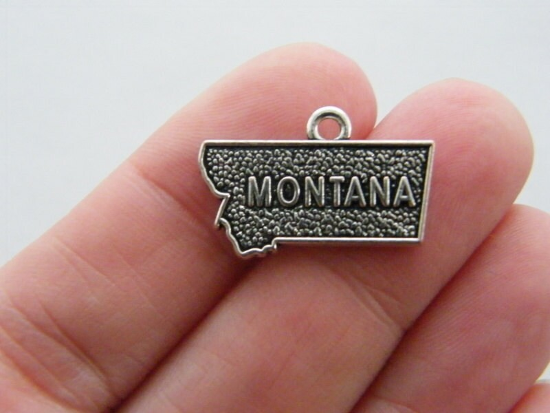 4 Montana charms antique silver tone WT164