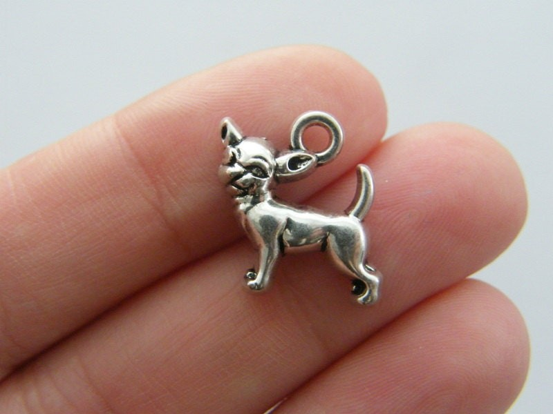 4 Chihuahua dog charms antique silver tone A796